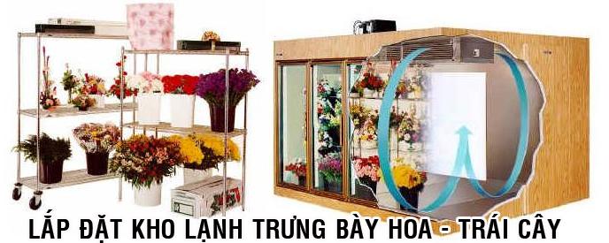 kho lạnh có cửa kính trưng bày hoa